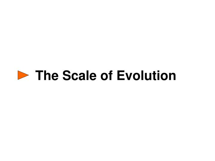 The Scale of Evolution