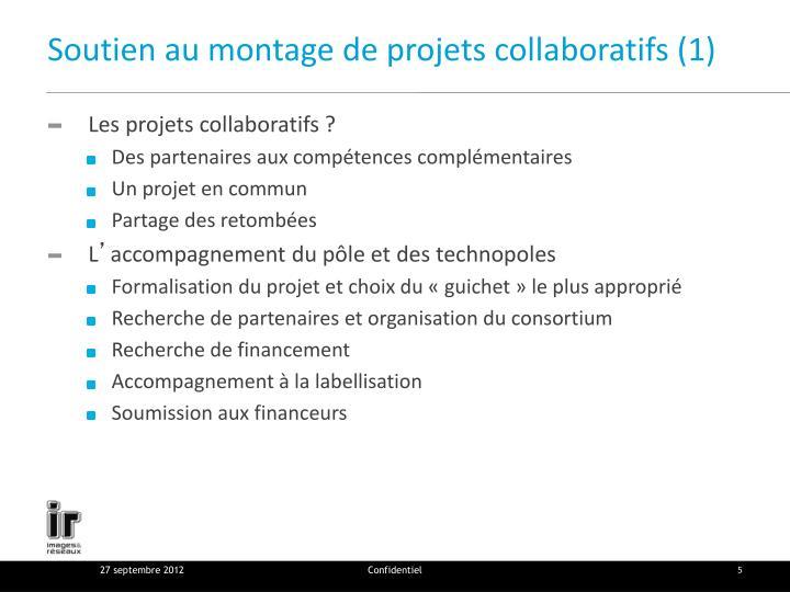 Soutien au montage de projets collaboratifs (1)