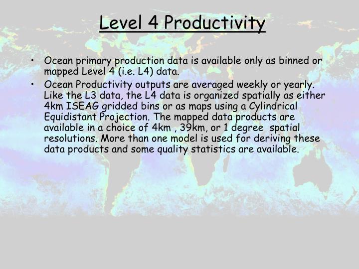 Level 4 Productivity