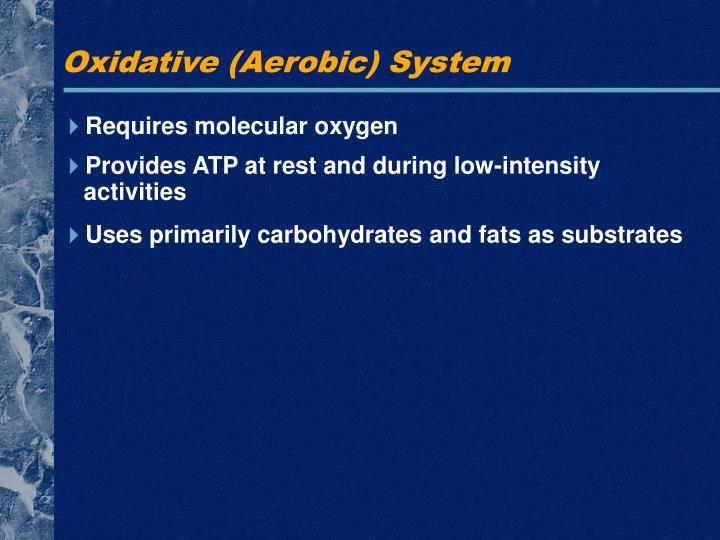 Oxidative (Aerobic) System