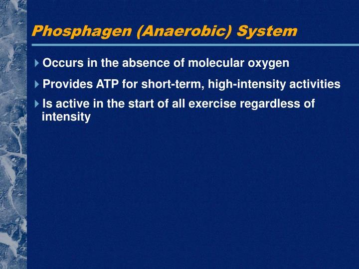 Phosphagen (Anaerobic) System
