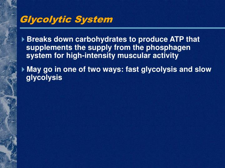 Glycolytic System