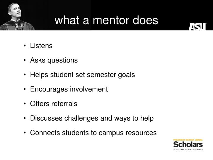 what a mentor does