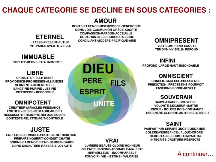 CHAQUE CATEGORIE SE DECLINE EN SOUS CATEGORIES :