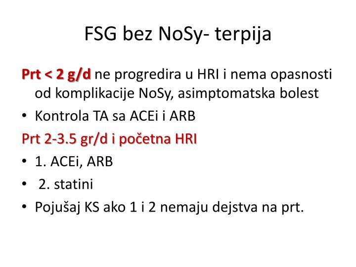 FSG bez NoSy- terpija