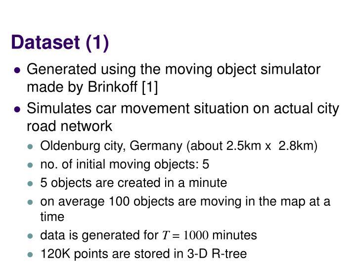 Dataset (1)