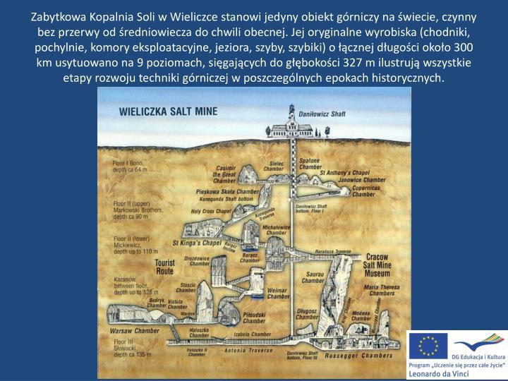 Zabytkowa Kopalnia Soli w Wieliczce stanowi jedyny obiekt górniczy na świecie, czynny bez przerwy od średniowiecza do chwili obecnej. Jej oryginalne wyrobiska (chodniki, pochylnie, komory eksploatacyjne, jeziora, szyby, szybiki) o łącznej długości około 300 km usytuowano na 9 poziomach, sięgających do głębokości 327 m ilustrują wszystkie etapy rozwoju techniki górniczej w poszczególnych epokach historycznych.