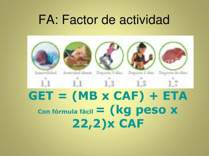 FA: Factor de actividad