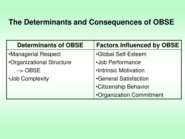 The Determinants and Consequences of OBSE