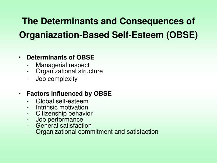 The Determinants and Consequences of Organiazation-Based Self-Esteem (OBSE)