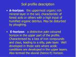 soil profile description3