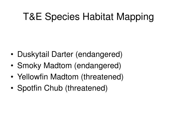 T&E Species Habitat Mapping