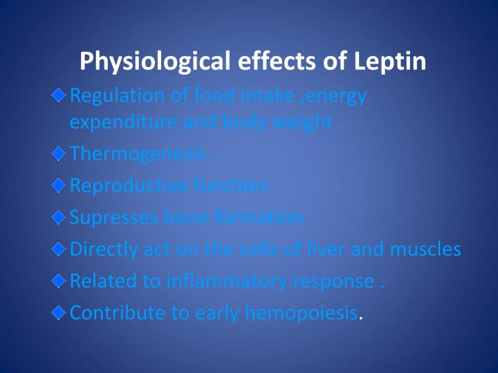 Physiological effects of Leptin