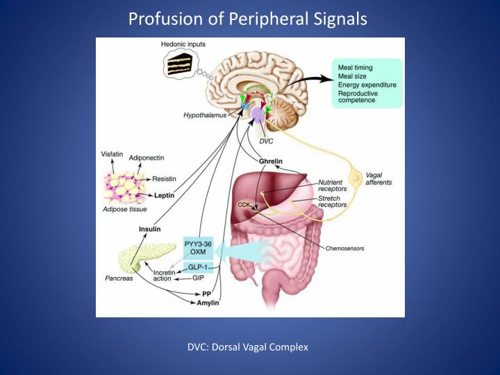 Profusion of Peripheral Signals