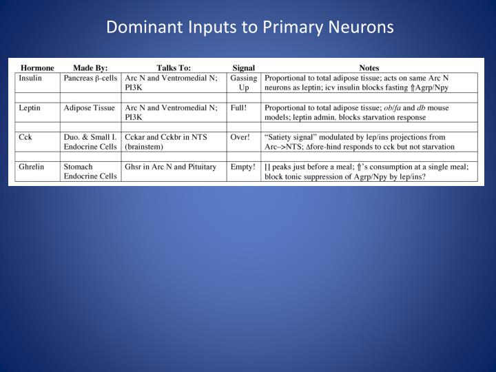 Dominant Inputs to Primary Neurons