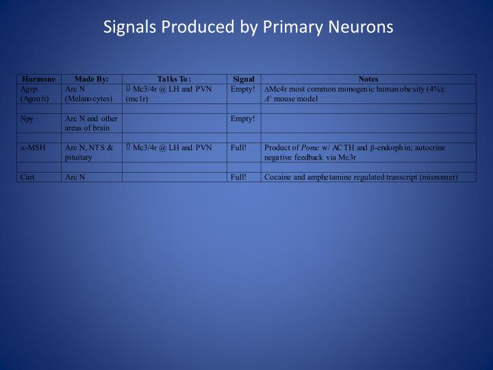Signals Produced by Primary Neurons