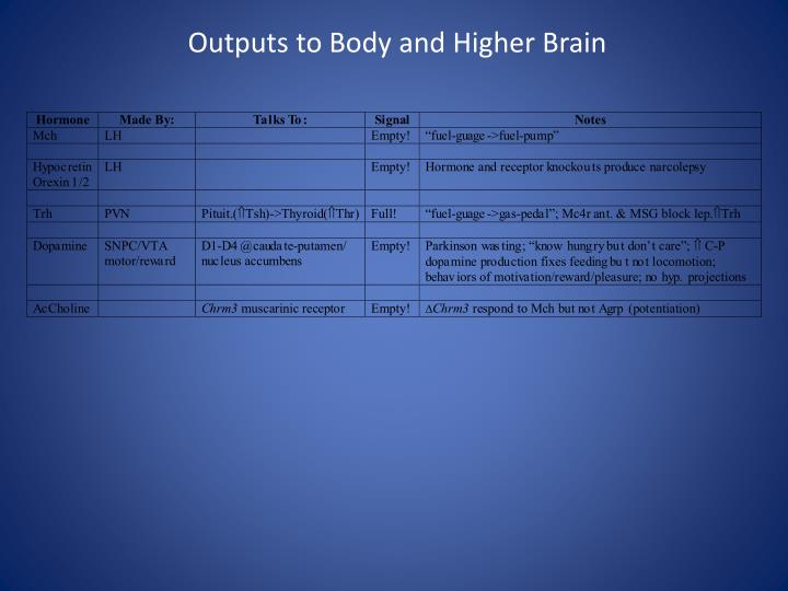 Outputs to Body and Higher Brain