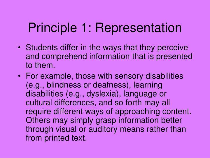 Principle 1: Representation