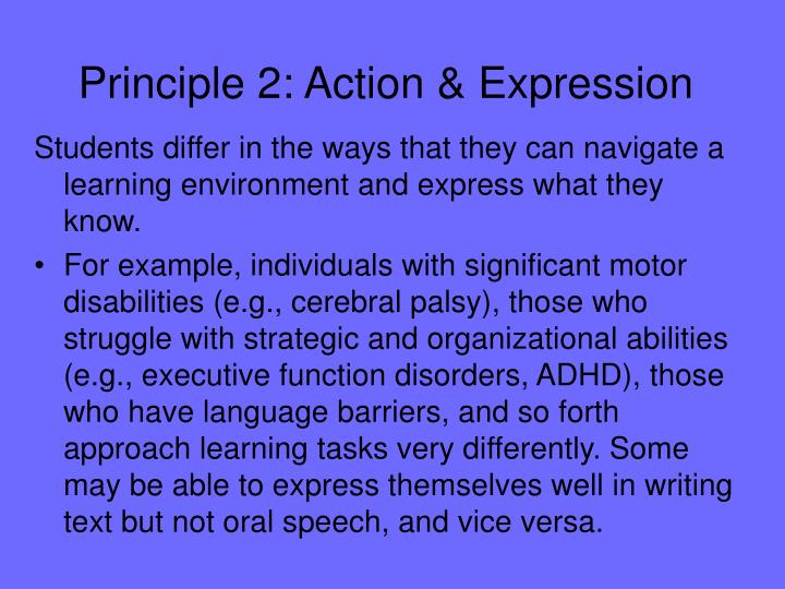 Principle 2: Action & Expression