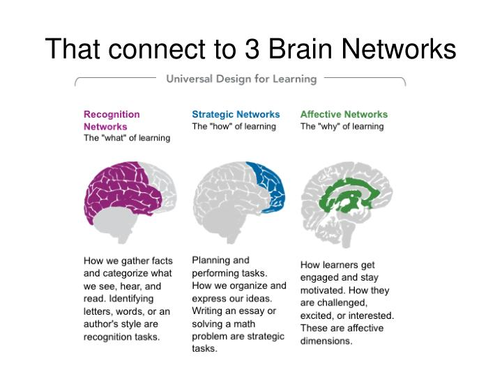 That connect to 3 Brain Networks