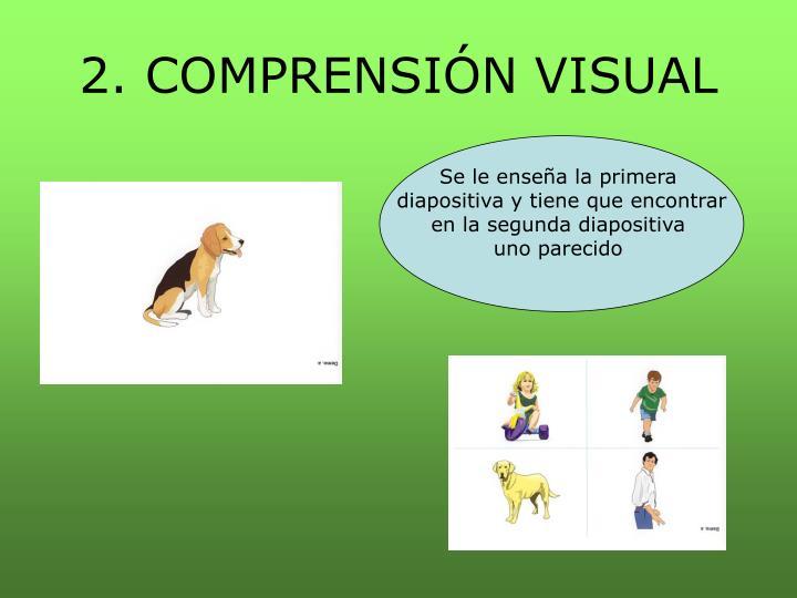 2. COMPRENSIÓN VISUAL