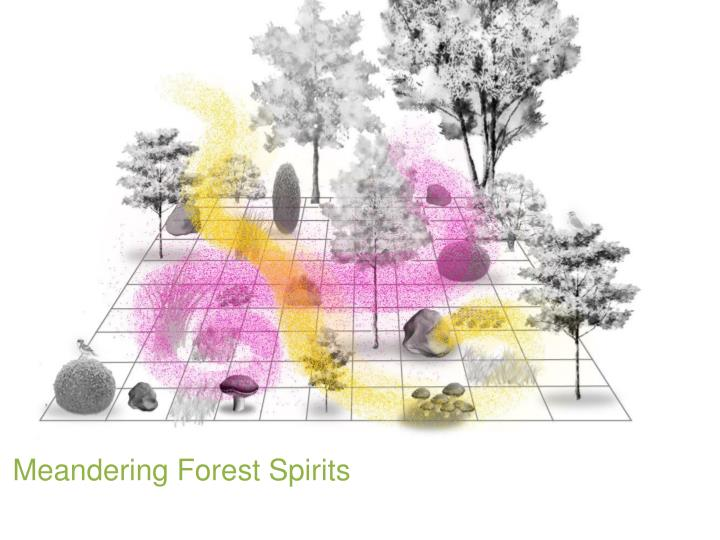 Meandering Forest Spirits