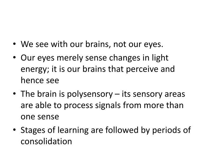 We see with our brains, not our eyes.
