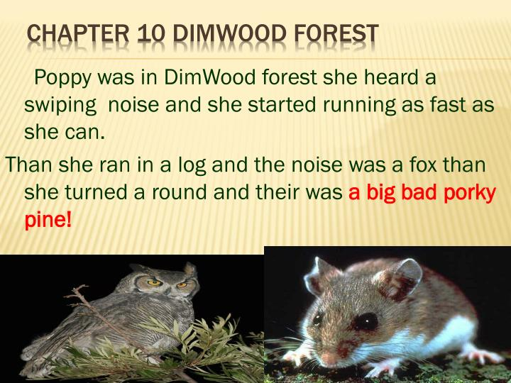 Poppy was in DimWood forest she heard a swiping  noise and she started running as fast as she can.
