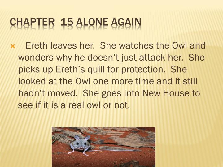 Ereth leaves her.  She watches the Owl and wonders why he doesn't just attack her.  She picks up Ereth's quill for protection.  She looked at the Owl one more time and it still hadn't moved.  She goes into New House to see if it is a real owl or not.