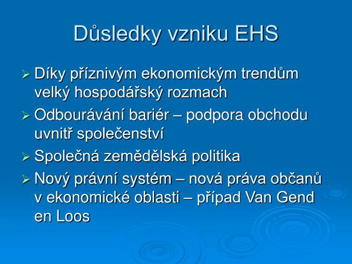 Důsledky vzniku EHS