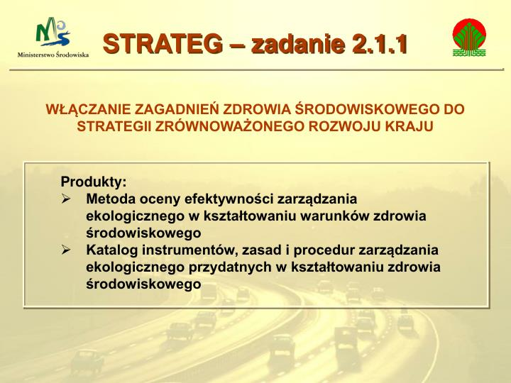 STRATEG – zadanie 2.1.1