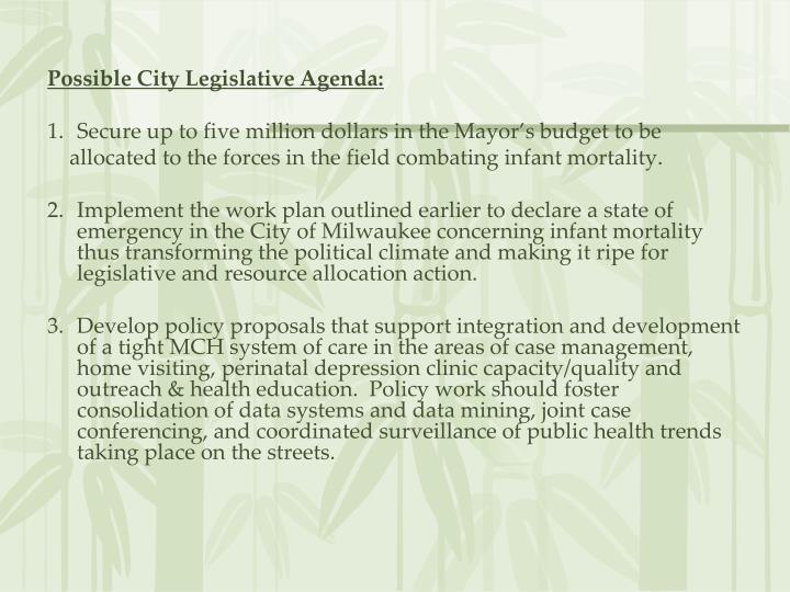 Possible City Legislative Agenda: