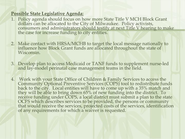 Possible State Legislative Agenda: