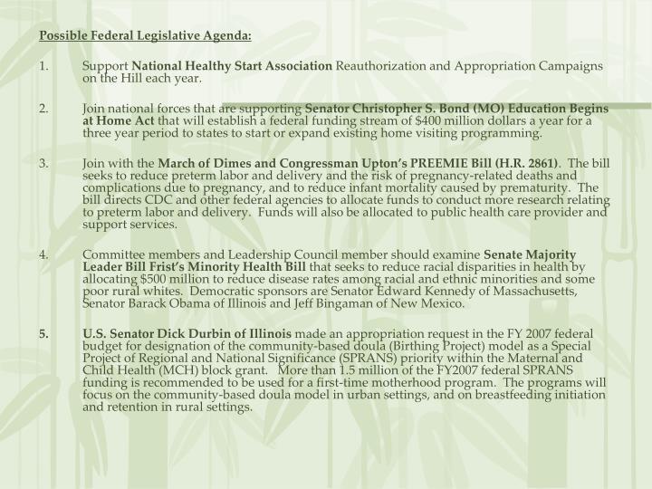 Possible Federal Legislative Agenda: