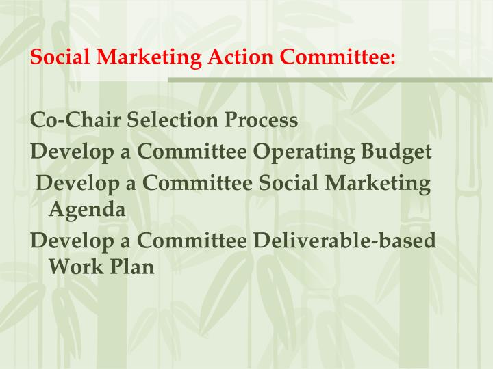 Social Marketing Action Committee: