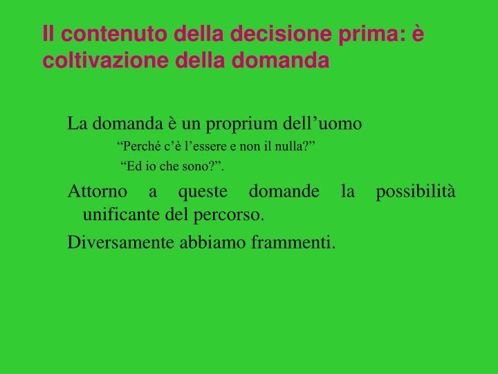 Il contenuto della decisione prima: è coltivazione della domanda