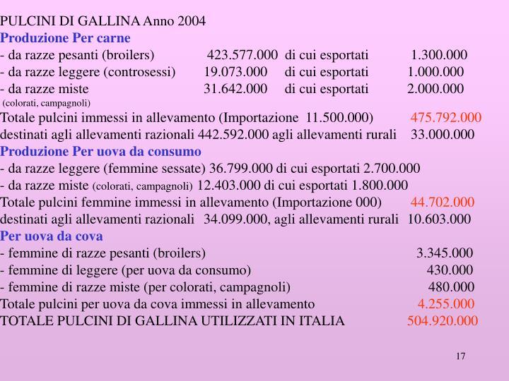 PULCINI DI GALLINA Anno 2004