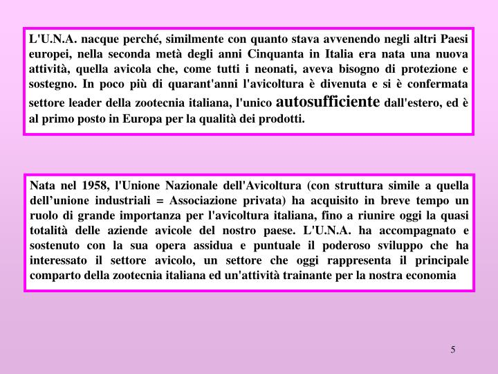 L'U.N.A. nacque perché, similmente con quanto stava avvenendo negli altri Paesi europei, nella seconda metà degli anni Cinquanta in Italia era nata una nuova attività, quella avicola che, come tutti i neonati, aveva bisogno di protezione e sostegno. In poco più di quarant'anni l'avicoltura è divenuta e si è confermata settore leader della zootecnia italiana, l'unico