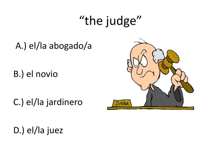 """the judge"""
