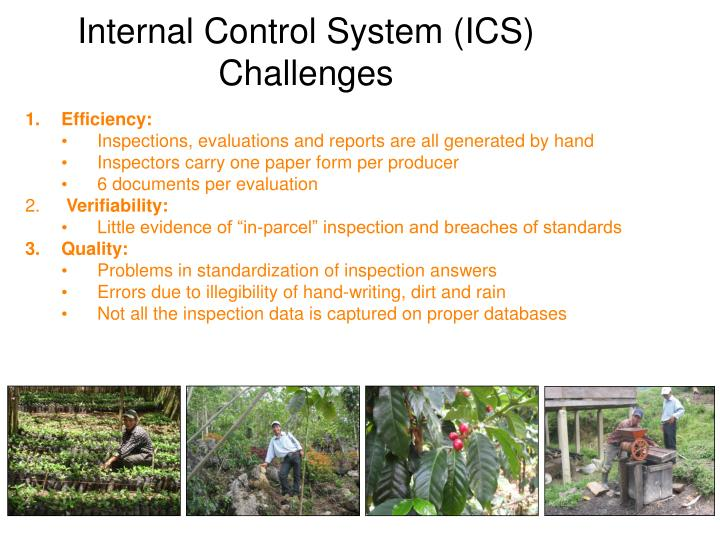 Internal Control System (ICS)