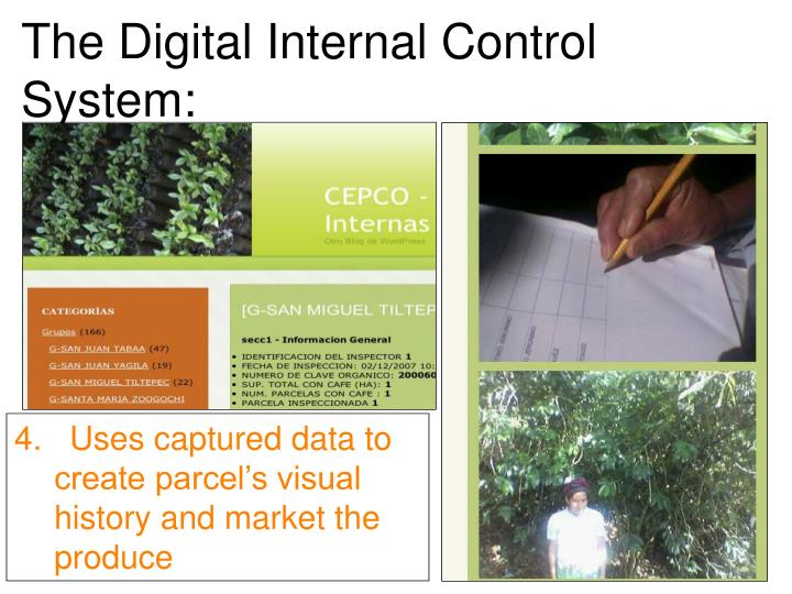 The Digital Internal Control System: