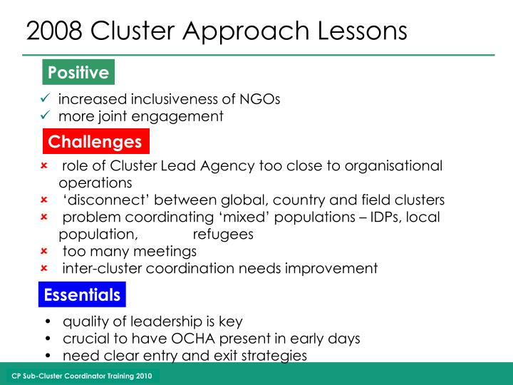 2008 Cluster Approach Lessons