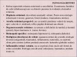 patologia retinei