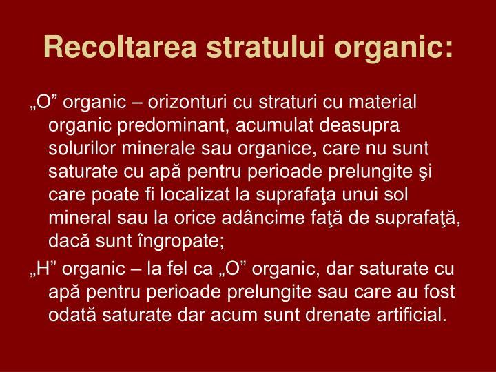 Recoltarea stratului organic: