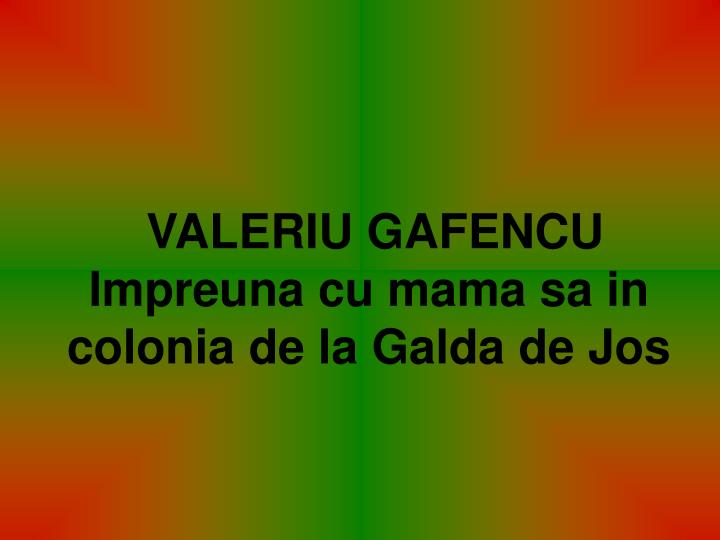 VALERIU GAFENCU     Impreuna cu mama sa in colonia de la Galda de Jos
