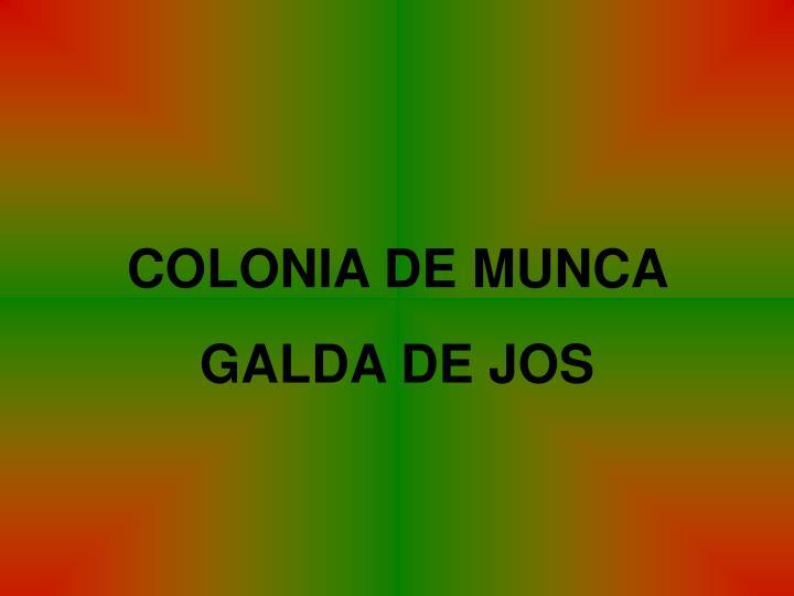 COLONIA DE MUNCA