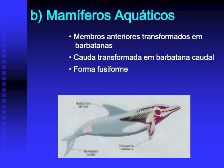 b) Mamíferos Aquáticos