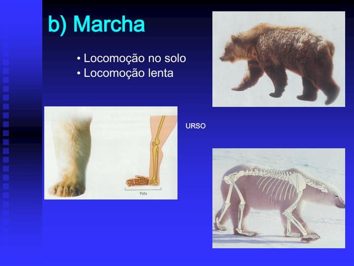 b) Marcha