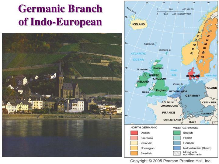 Germanic Branch