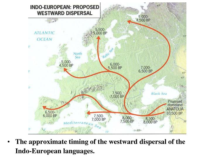 The approximate timing of the westward dispersal of the